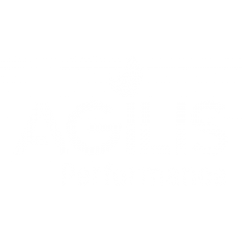 logo Agilis Performance